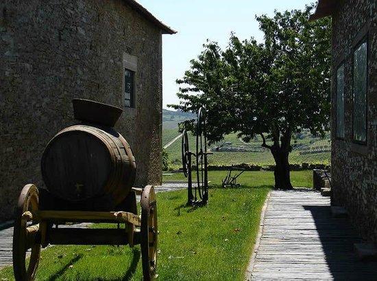 Norte de Portugal, Portugal: Quinta da Avessada - Favaios, Douro Valley