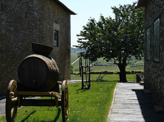 Northern Portugal, Portugal: Quinta da Avessada - Favaios, Douro Valley