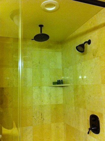Sierra Nevada Resort & Spa: Dual shower heads!