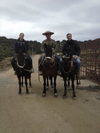 Horseback Riding Colchagua Valley