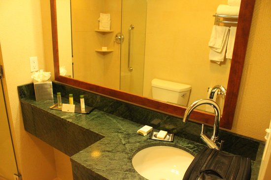 Doubletree By Hilton - Times Square South: sink area and countertop.