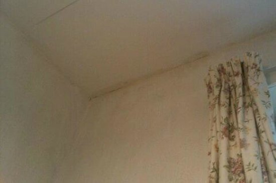 Broadway Hotel: Damp ceiling