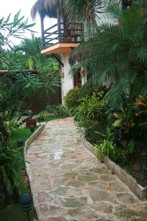 Posada 2 Amigos : The garden meticulously and lovingly tended to.
