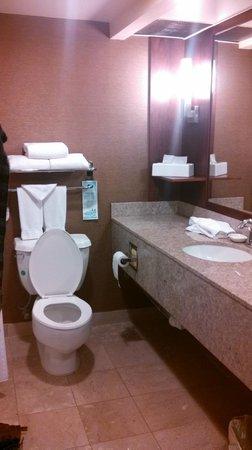 Holiday Inn Torrance: Upscale-looking bathroom.