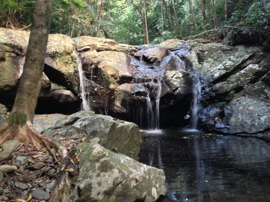 Rose Gums Wilderness Retreat: Waterfall at the end of one of the trails
