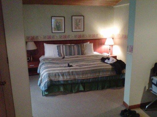 Hotel Saint Simon: Amplia cama