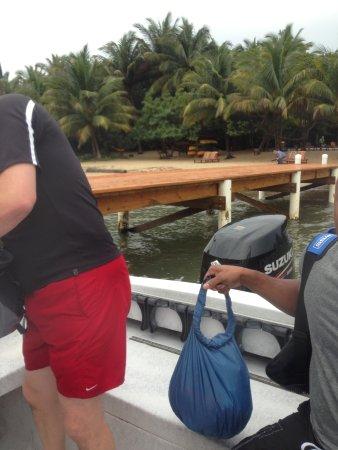 Hamanasi Adventure and Dive Resort: Returning from snorkeling