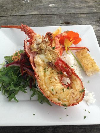 our yummy cray from kaikoura seafood bbq kiosk