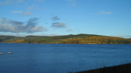 Kielder Waterside: Spectacular views become the norm