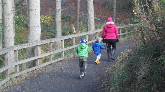 Kielder Waterside: Better when the children get a bit older