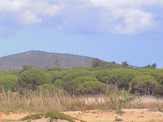 Pinhal do Sol Hotel: View from nearby beach