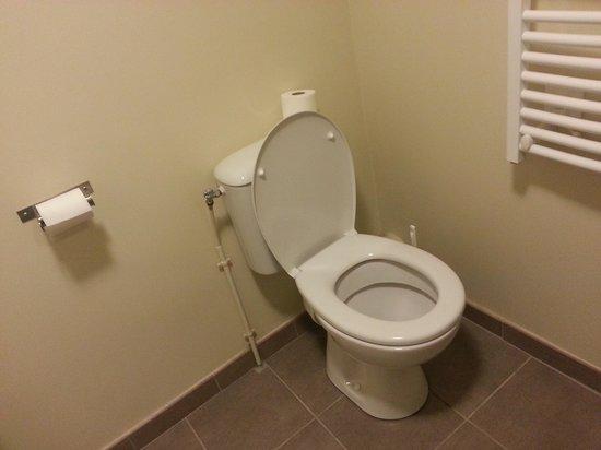 Appart'City La Roche sur Yon Centre : WC