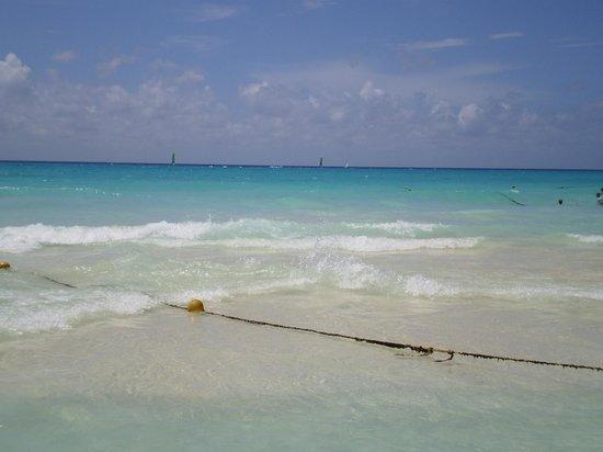 Hotel Riu Playacar: Playa del hotel