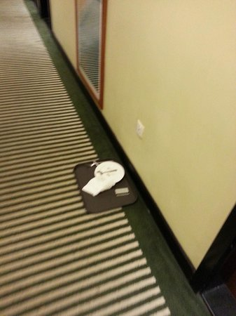 ibis Amman: Room Service Food Trays kept outside and not collected for more than 24 Hours