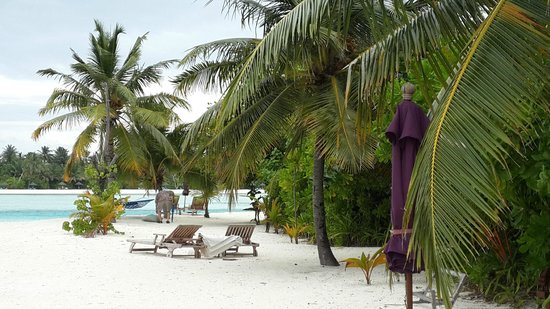 Naladhu Private Island Maldives : Beach in front of our villa