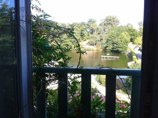 Silence Le Relais des Etangs de Guibert : View over the lake