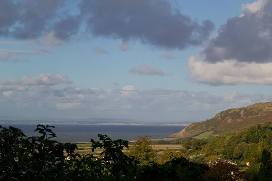 Amberton Bed and Breakfast: View from decking