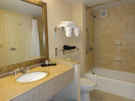 Embassy Suites by Hilton Boston - at Logan Airport: Very spacious bathroom