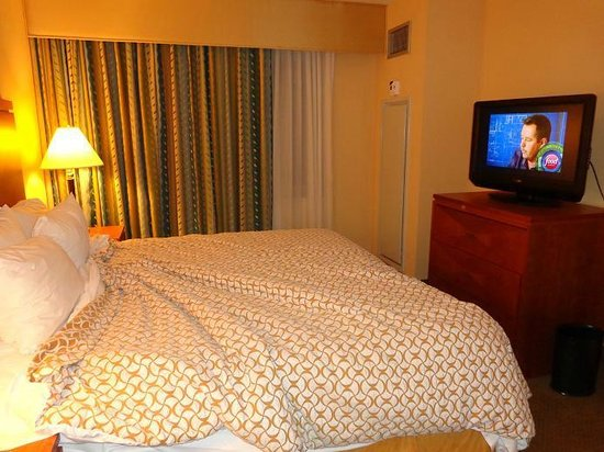 Embassy Suites by Hilton Boston - at Logan Airport: Bed and TV!