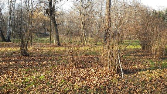 Sokolniki Park: Последние солнечные деньки!