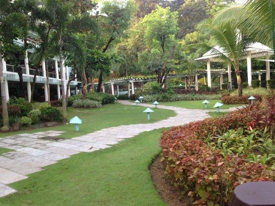 Camayan Beach Resort and Hotel : Garden