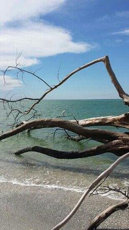 Palm Island Resort: beach off stump pass