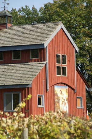 Buttermilk Falls Inn & Spa: barn