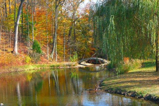 Buttermilk Falls Inn Spa Autumn Bridge