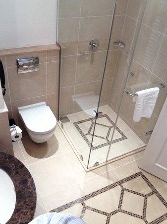 Villa Rosa Kempinski Nairobi: shower booth