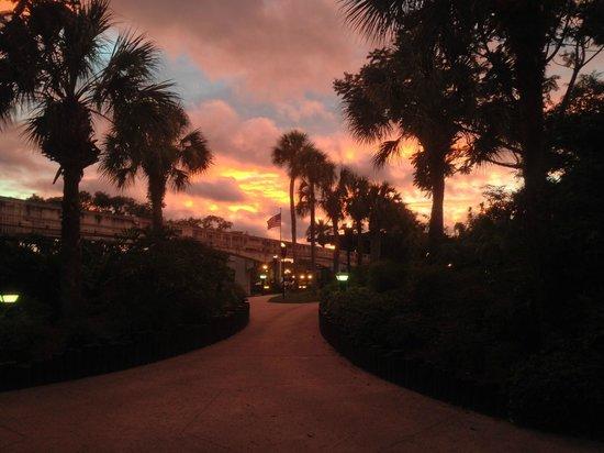 Disney's Polynesian Village Resort: Sunset at the Polynesian