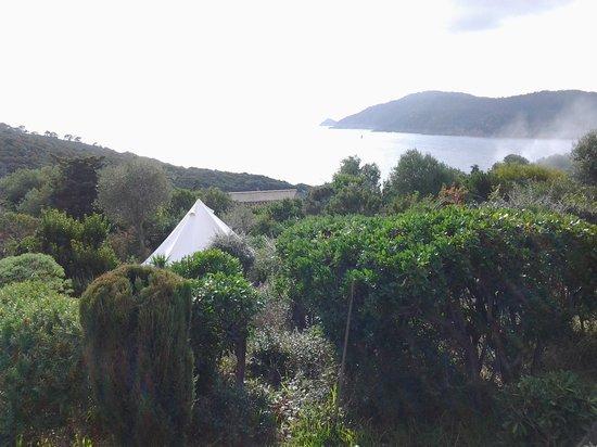 La Bourdonniere: la tente et la vue vers la mer et Port Cros