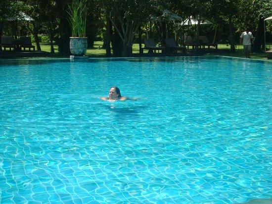 The Sarojin: crowded pool