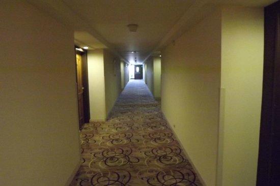 Bogota Plaza Summit Hotel: Corredor do andar