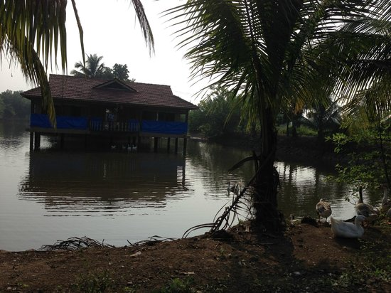 Neral, India: Pond House