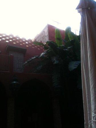 Les Jardins d'Henia : Terrasse