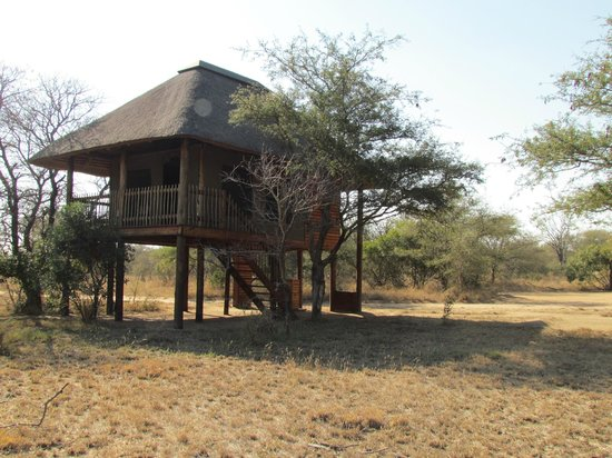 nThambo Tree Camp : our room