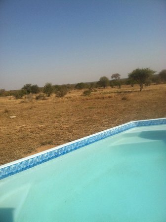 nThambo Tree Camp : view at the pool (too cold to swim!)