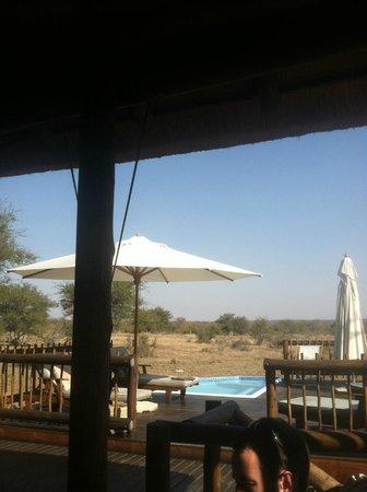 nThambo Tree Camp : lodge