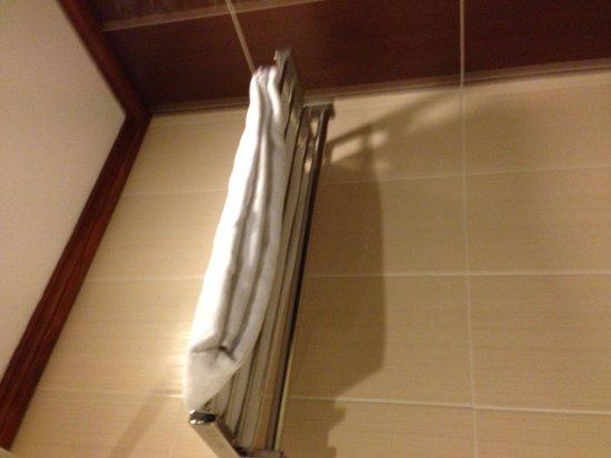 Empress Hotel: Overused towel