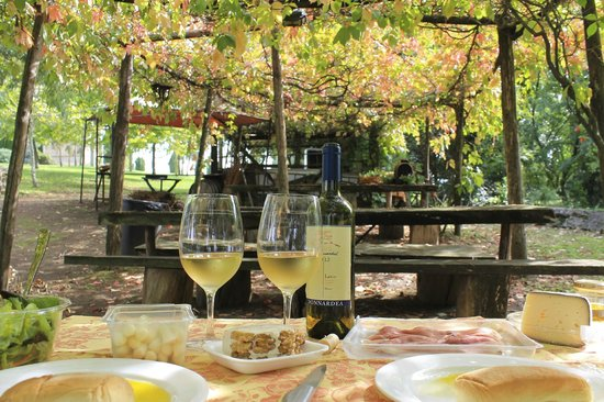 Wine in Tour: Our picnic with wine produced in the vineyard