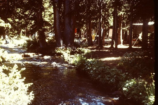 Snowy Range Scenic Byway: Nash Fork Campground snowy Range 1978