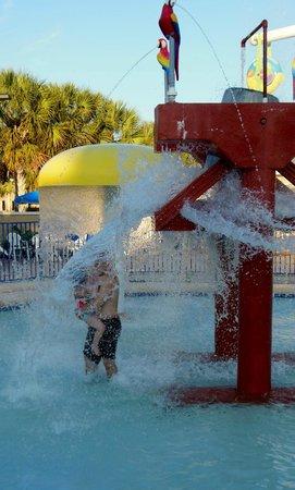 Plantation Resort : Kiddie Pool