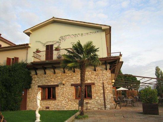 Hotel Bramante: foto Hotel dal parco