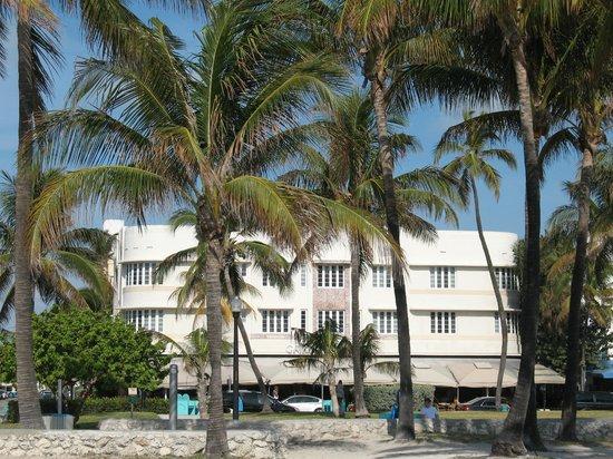 Cardozo Hotel: Vista del Cardozo dalla spiaggia