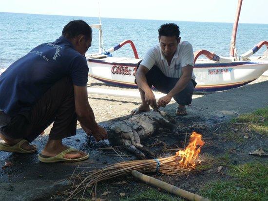 Ciliks Beach Garden: Vorbereitung zum großen gemeinsamen Fest