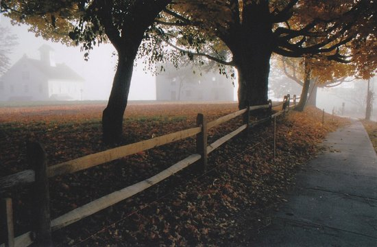 Opposite the Griswold Inn in morning fog