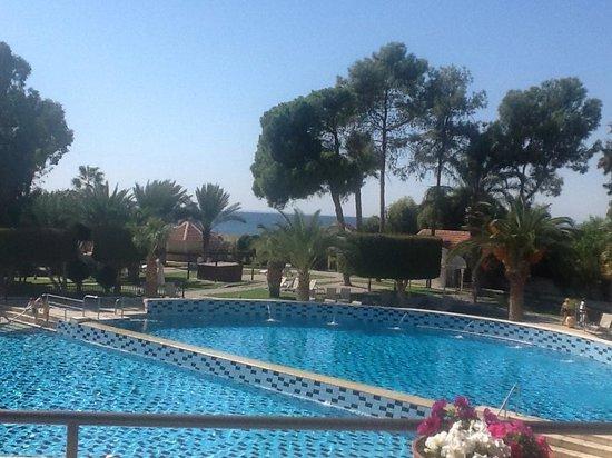 Elias Beach Hotel: The pool