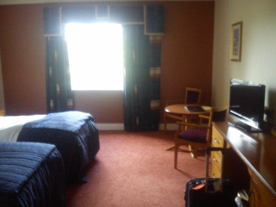 Carrickdale Hotel: Twi Room
