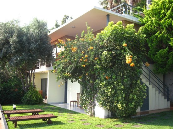 Casa do Papagaio: La maison