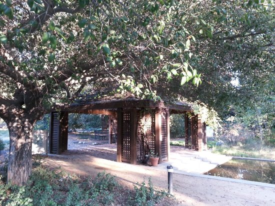 Rancho Santa Ana Botanic Garden In Claremont Wedding